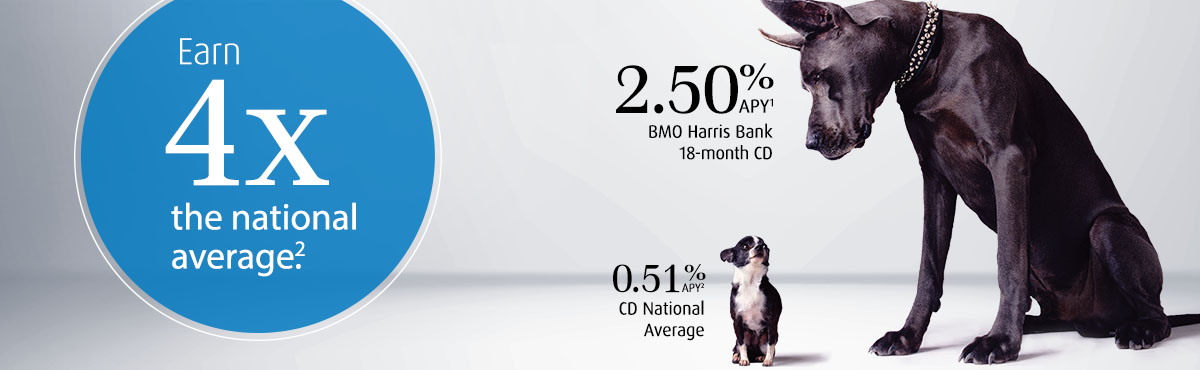 Stop searching. Start saving. Limited-time BMO Harris CD Specials1. Including 1.00% APY2 13-month CD Term